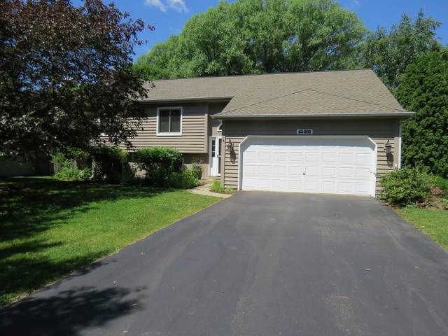 6S002 Timberlane Drive, Naperville, IL 60563 (MLS #11123135) :: Touchstone Group