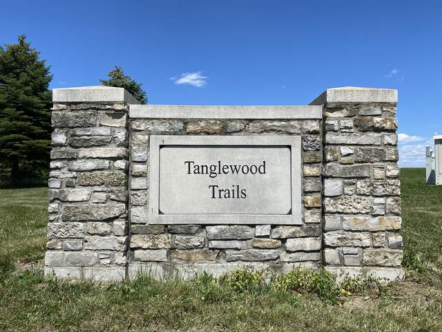 Lot 24 Tanglewood Trail, Yorkville, IL 60560 (MLS #11123139) :: O'Neil Property Group