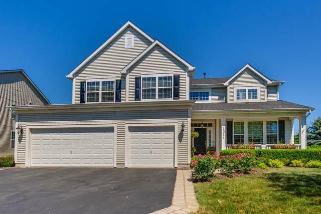 1614 Natures Way, Lindenhurst, IL 60046 (MLS #11123718) :: Ryan Dallas Real Estate