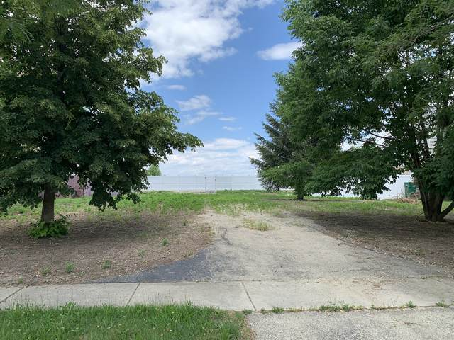 4501 Northmont Drive, Plainfield, IL 60506 (MLS #11124001) :: The Wexler Group at Keller Williams Preferred Realty