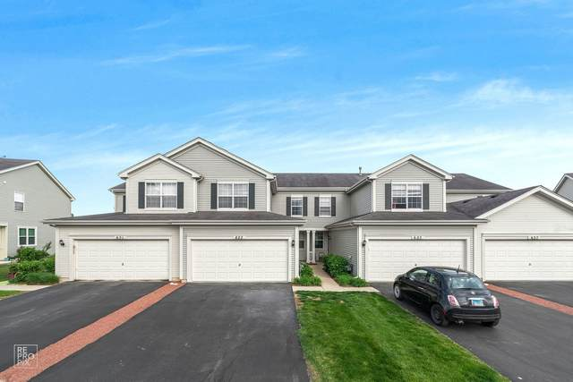 623 W Kristina Lane #623, Round Lake, IL 60073 (MLS #11124120) :: O'Neil Property Group