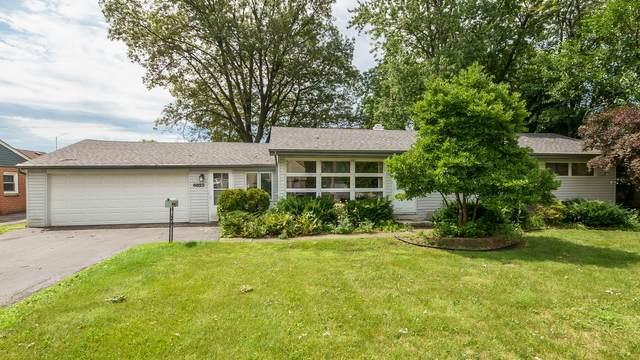 6823 W Crandall Avenue, Worth, IL 60482 (MLS #11124668) :: Jacqui Miller Homes