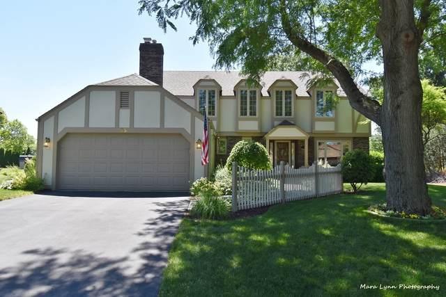 85 Foxwood Lane, St. Charles, IL 60174 (MLS #11124880) :: Suburban Life Realty