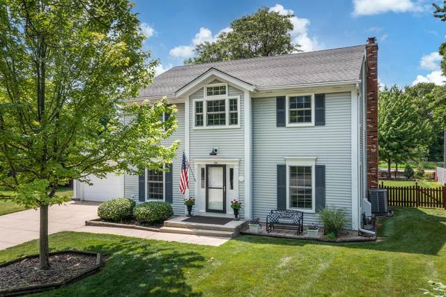 919 Chattanooga Court, Naperville, IL 60540 (MLS #11124900) :: Rossi and Taylor Realty Group
