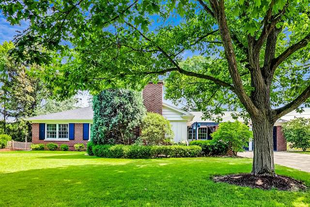 546 Pamela Circle, Hinsdale, IL 60521 (MLS #11124995) :: The Wexler Group at Keller Williams Preferred Realty