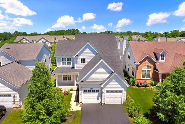 254 Hanbury Drive, Lake Zurich, IL 60047 (MLS #11125090) :: John Lyons Real Estate