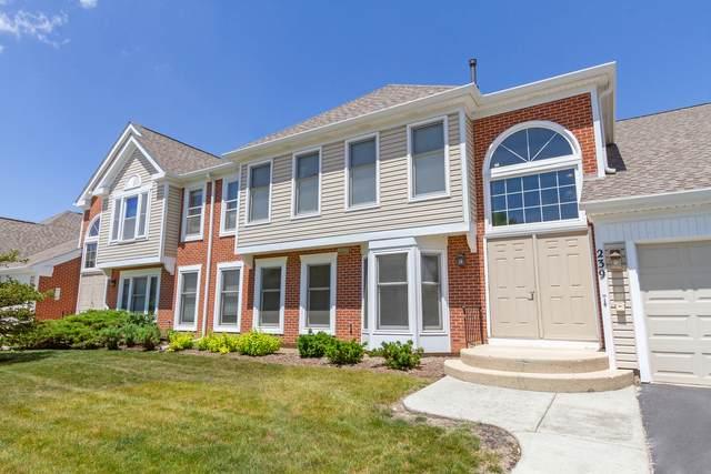 239 University Lane B, Elk Grove Village, IL 60007 (MLS #11125148) :: John Lyons Real Estate