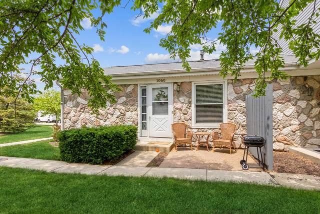 1060 N Hampton Harbor W #1060, Schaumburg, IL 60193 (MLS #11125413) :: O'Neil Property Group