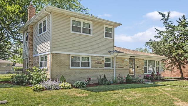 9250 Parkside Avenue, Morton Grove, IL 60053 (MLS #11125745) :: The Wexler Group at Keller Williams Preferred Realty