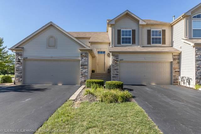 1602 Fredericksburg Lane, Aurora, IL 60503 (MLS #11125787) :: Jacqui Miller Homes