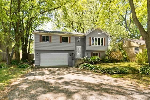9105 Pine Avenue, Wonder Lake, IL 60097 (MLS #11126452) :: Jacqui Miller Homes