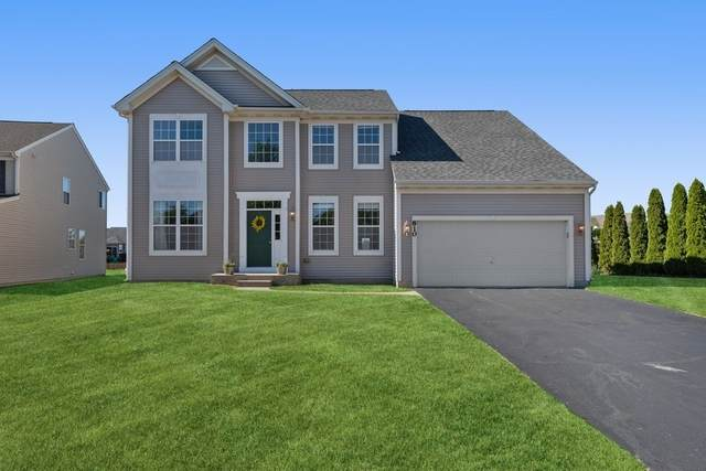 810 Bach Court, Woodstock, IL 60098 (MLS #11126606) :: Jacqui Miller Homes