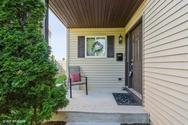 243 Adams Street, Elgin, IL 60123 (MLS #11127257) :: RE/MAX Next