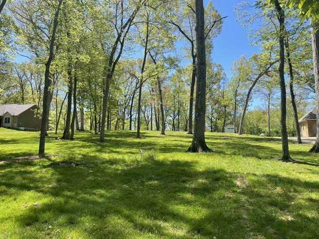 Lot 4 Sangamon Oaks, MONTICELLO, IL 61856 (MLS #11127392) :: Littlefield Group