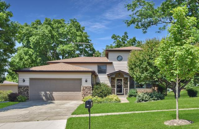 1730 Patricia Lane, St. Charles, IL 60174 (MLS #11127541) :: BN Homes Group