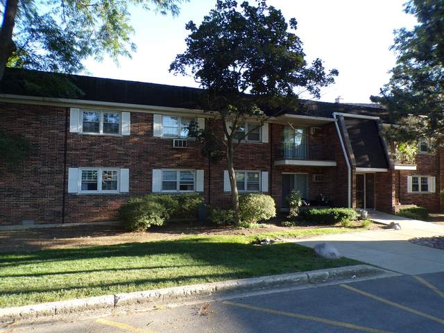 2327 Ogden Avenue #10, Downers Grove, IL 60515 (MLS #11127543) :: The Wexler Group at Keller Williams Preferred Realty