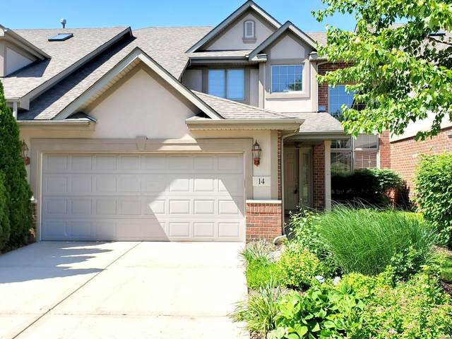 14 Shadow Creek Circle, Palos Heights, IL 60463 (MLS #11127623) :: Schoon Family Group