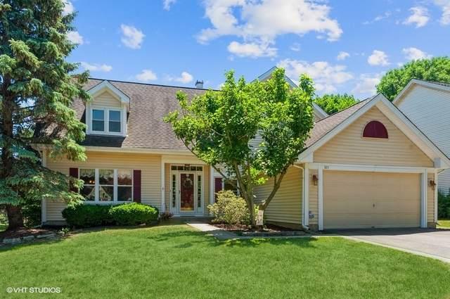 305 Haddon Circle, Vernon Hills, IL 60061 (MLS #11128207) :: Carolyn and Hillary Homes