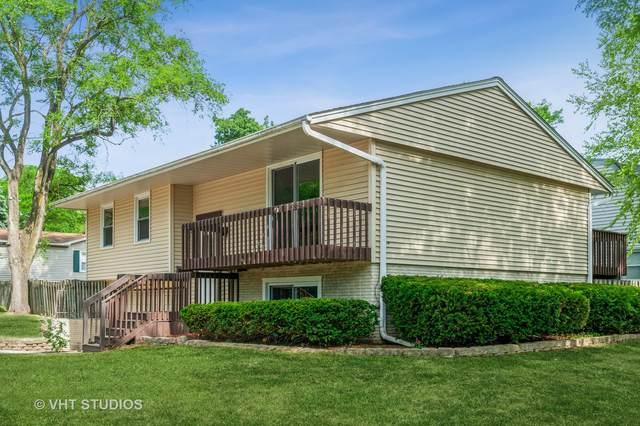 674 Bernard Drive, Buffalo Grove, IL 60089 (MLS #11128625) :: Lewke Partners