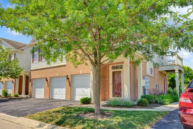 9018 Concord Lane I, Justice, IL 60458 (MLS #11128759) :: The Wexler Group at Keller Williams Preferred Realty