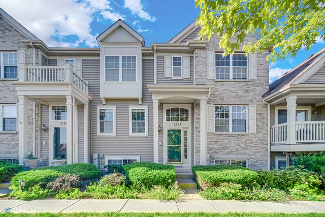1238 Derry Lane, Pingree Grove, IL 60140 (MLS #11128834) :: The Wexler Group at Keller Williams Preferred Realty