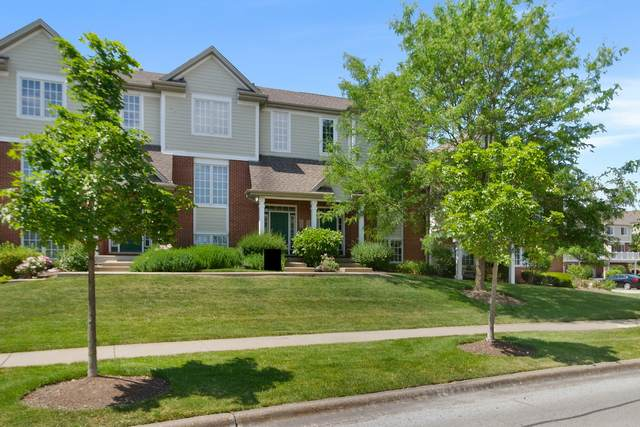 10647 Gabrielle Lane, Orland Park, IL 60462 (MLS #11128916) :: Schoon Family Group