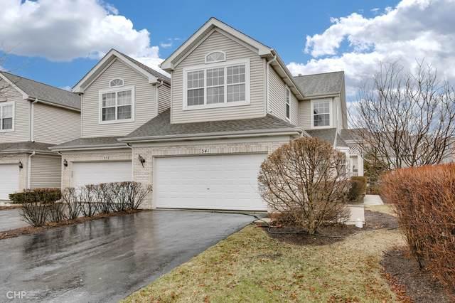 341 Lucille Lane, Schaumburg, IL 60193 (MLS #11128922) :: BN Homes Group