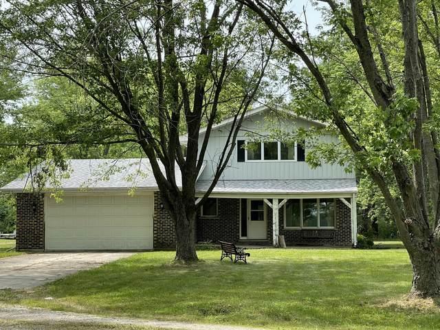 23532 S Scheer Road, Frankfort, IL 60423 (MLS #11128928) :: Schoon Family Group