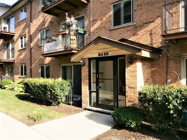 8425 W Gregory Street #201, Chicago, IL 60656 (MLS #11128967) :: Littlefield Group