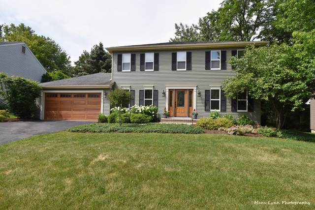 123 Lewis Court, St. Charles, IL 60174 (MLS #11128969) :: Littlefield Group