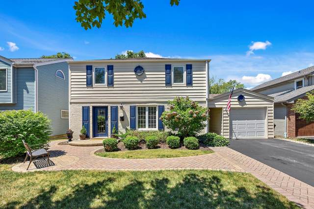 354 S Newbury Place, Arlington Heights, IL 60005 (MLS #11129076) :: Carolyn and Hillary Homes