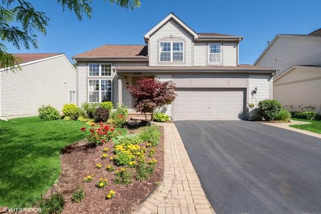 1025 S Hampton Drive, Round Lake, IL 60073 (MLS #11129209) :: O'Neil Property Group