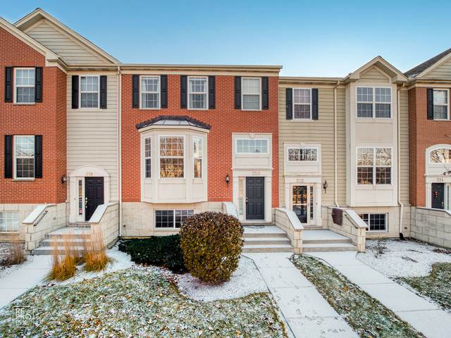 220 Comstock Drive #220, Elgin, IL 60124 (MLS #11129233) :: BN Homes Group