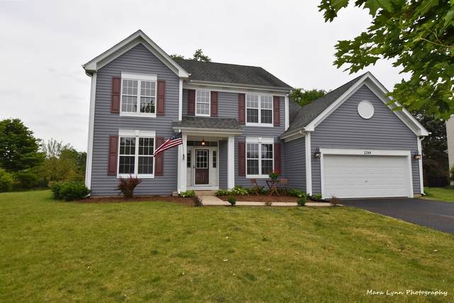 1244 Amaranth Drive, Naperville, IL 60564 (MLS #11129244) :: BN Homes Group