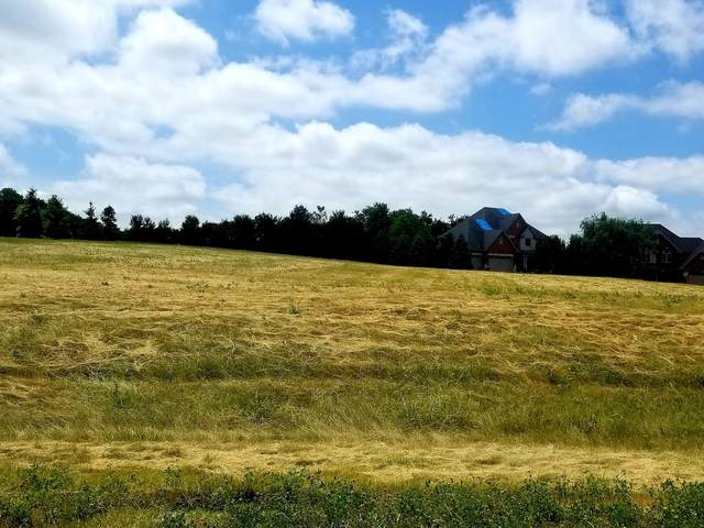 Lot 90 Zook's Nook, Millbrook, IL 60536 (MLS #11129304) :: The Wexler Group at Keller Williams Preferred Realty