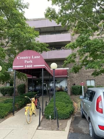 1460 Fairlane Drive #504, Schaumburg, IL 60193 (MLS #11129472) :: BN Homes Group