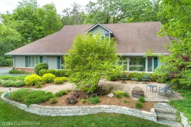 22252 W Little Pond Road, Kildeer, IL 60047 (MLS #11129678) :: John Lyons Real Estate