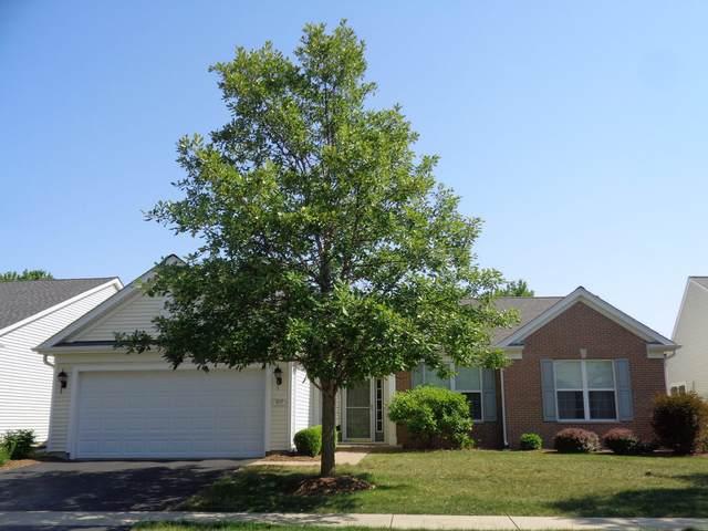 653 Tuscan Vw Drive, Elgin, IL 60124 (MLS #11129768) :: Helen Oliveri Real Estate