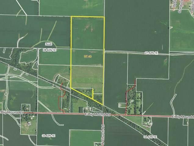 0 E Big Mound Road, Davis Junction, IL 61020 (MLS #11130145) :: Suburban Life Realty