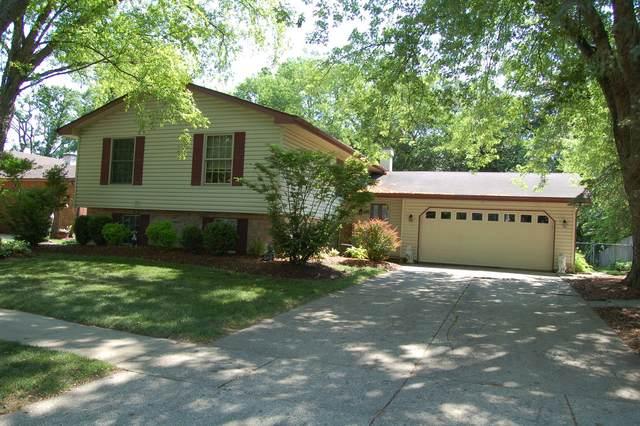 517 Cumberland Trail, Elgin, IL 60123 (MLS #11130226) :: BN Homes Group