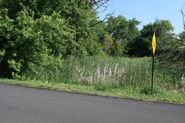 114 Thorobred Lane, Sleepy Hollow, IL 60118 (MLS #11130353) :: BN Homes Group