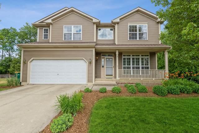 452 Teal Court, Grayslake, IL 60030 (MLS #11130656) :: Helen Oliveri Real Estate