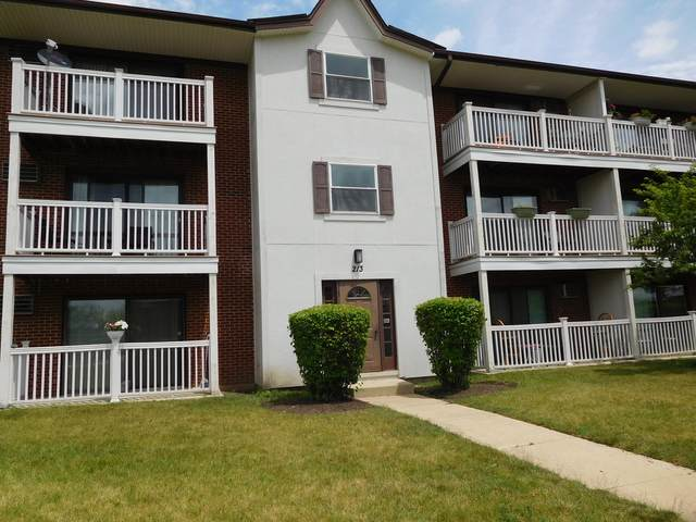 213 Gregory Street #9, Aurora, IL 60504 (MLS #11130677) :: BN Homes Group