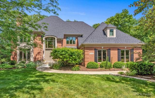 4N698 High Meadow Road, St. Charles, IL 60175 (MLS #11130802) :: BN Homes Group