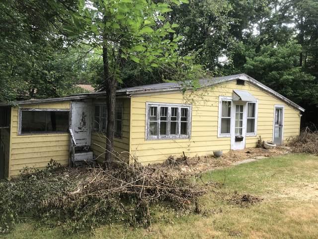 1187 Logan Avenue, Elgin, IL 60120 (MLS #11130853) :: BN Homes Group