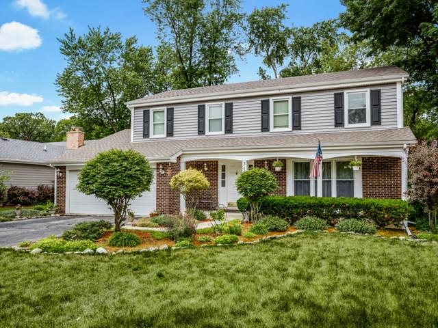 316 Evergreen Court, Schaumburg, IL 60193 (MLS #11130914) :: Carolyn and Hillary Homes