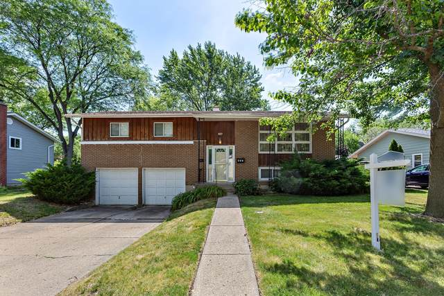 427 N Williams Drive, Palatine, IL 60074 (MLS #11131253) :: Angela Walker Homes Real Estate Group