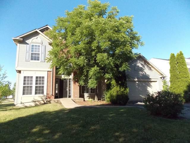 208 Lilac Street, Bolingbrook, IL 60490 (MLS #11131373) :: Jacqui Miller Homes