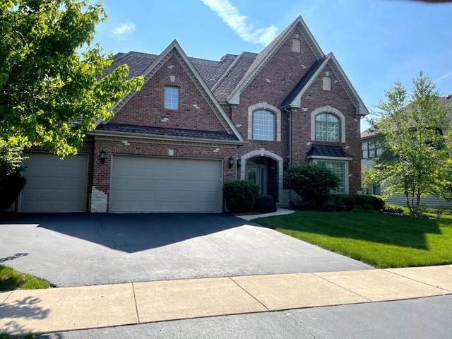 11661 Rushmore Drive, Plainfield, IL 60585 (MLS #11131671) :: O'Neil Property Group