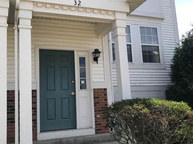 32 W Big Horn Drive, Hainesville, IL 60073 (MLS #11131893) :: Helen Oliveri Real Estate